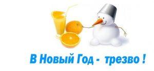 Trezvy-j-NG1